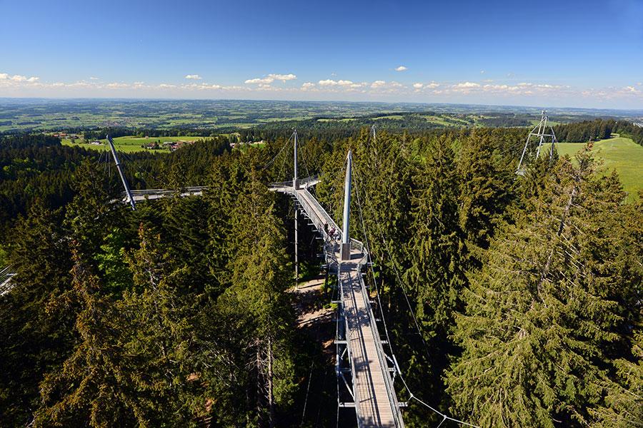 Skywalk Allgäu » Lindau Tourismus